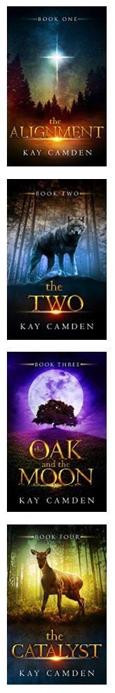 The Alignment Series by Kay Camden